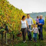 messina-winery-and-beach